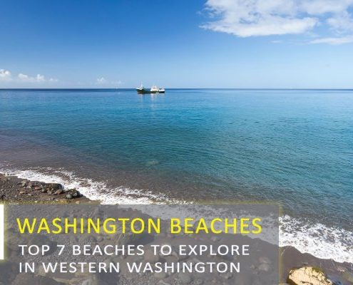 7 Beaches to Explore in Western Washington